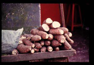 自分史に出てくるサツマイモの思い出